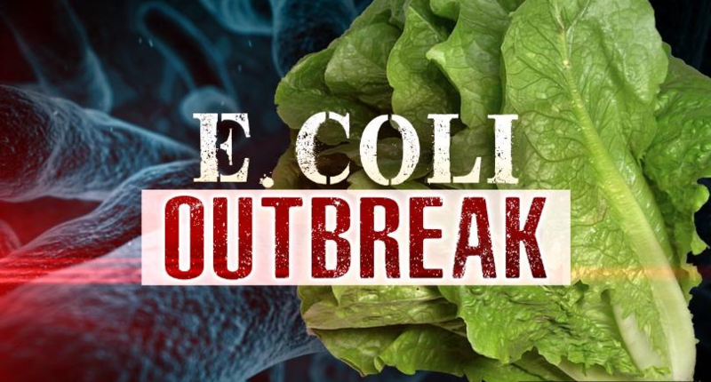 E.Coli in Romaine Lettuce Update Featured Photo