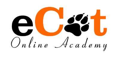 eCat Academy