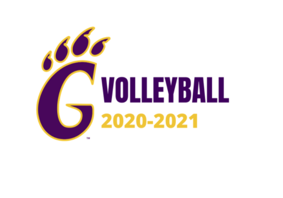 Volleyball 2020-2021