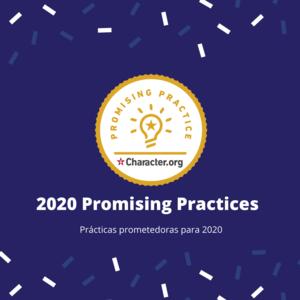 2020 Promising Practices