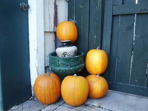 autumn-207854_640.jpg