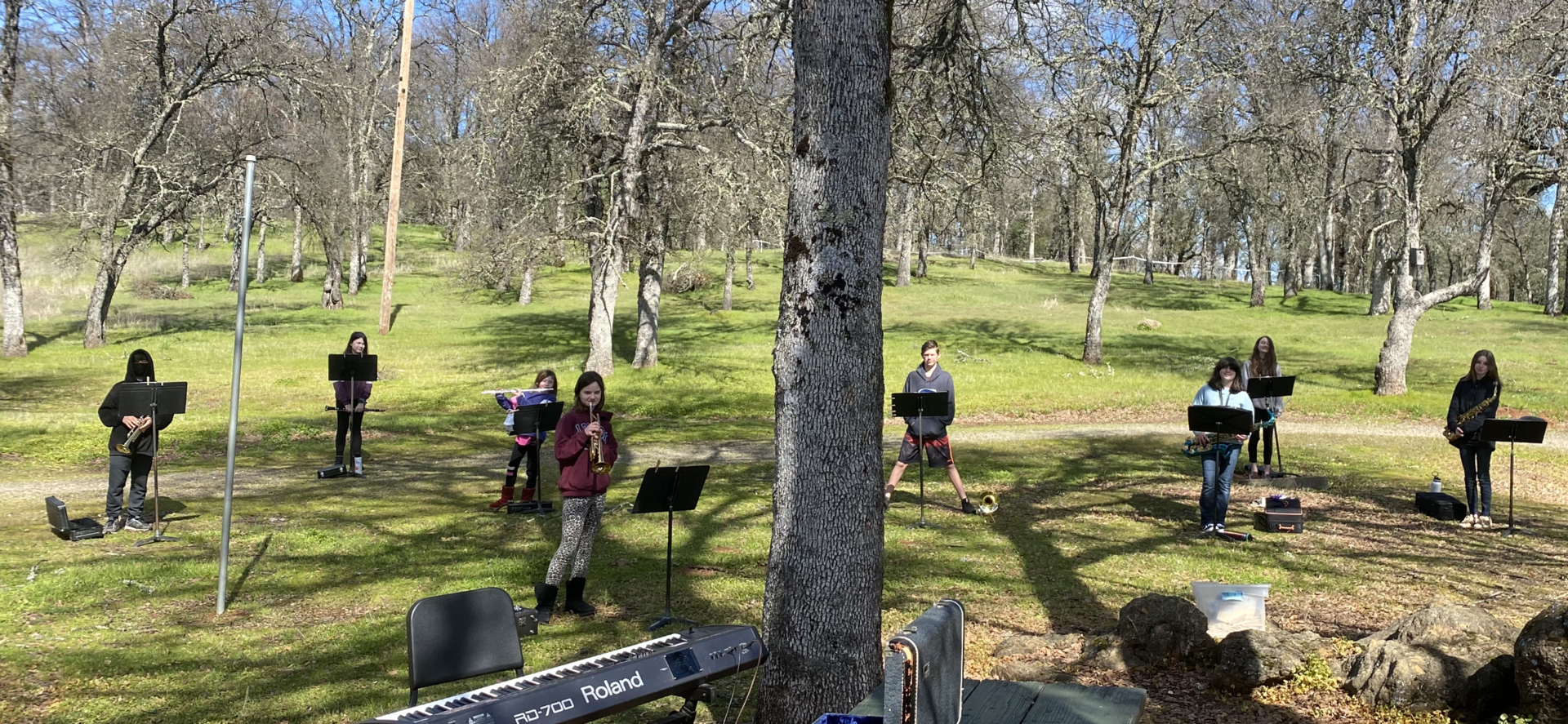 Green & Gold Band rehearsing in the woods because #2020.