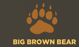 Big Brown Bear Typing