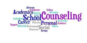 School Counselor.jpg