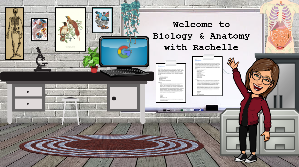 This image captures what Rachelle's classroom looks like at Bowman. She is standing energetically in front of the board which reads, ' Welcome to Biology and Anatomy!' The room has an anatomy torso on a tall cabinet, has biological prints hanging on the wall, and a computer, microscope, and plants sitting atop a lab desk.