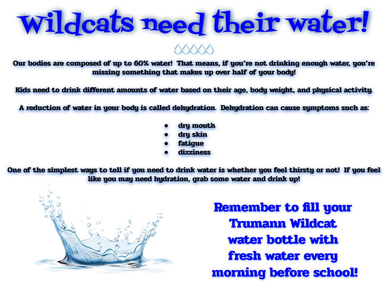 Wildcats love Water! Featured Photo