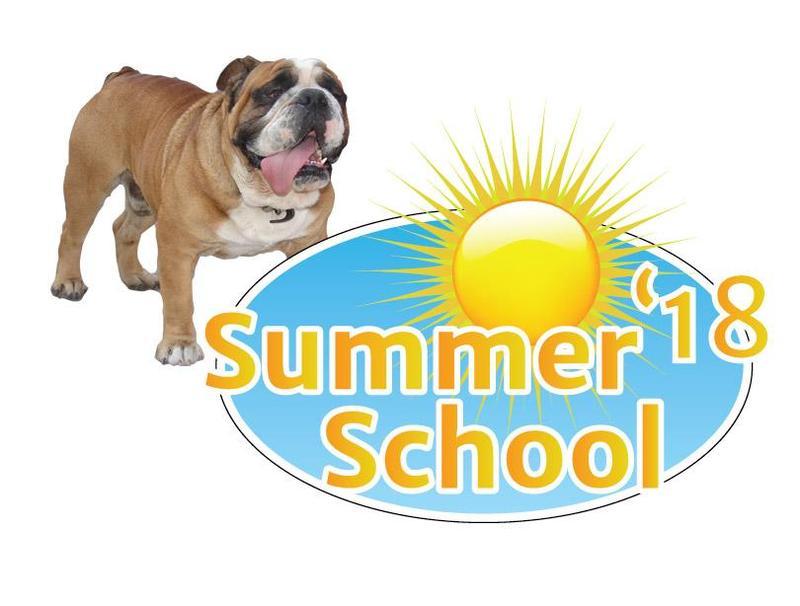 BD Summer School