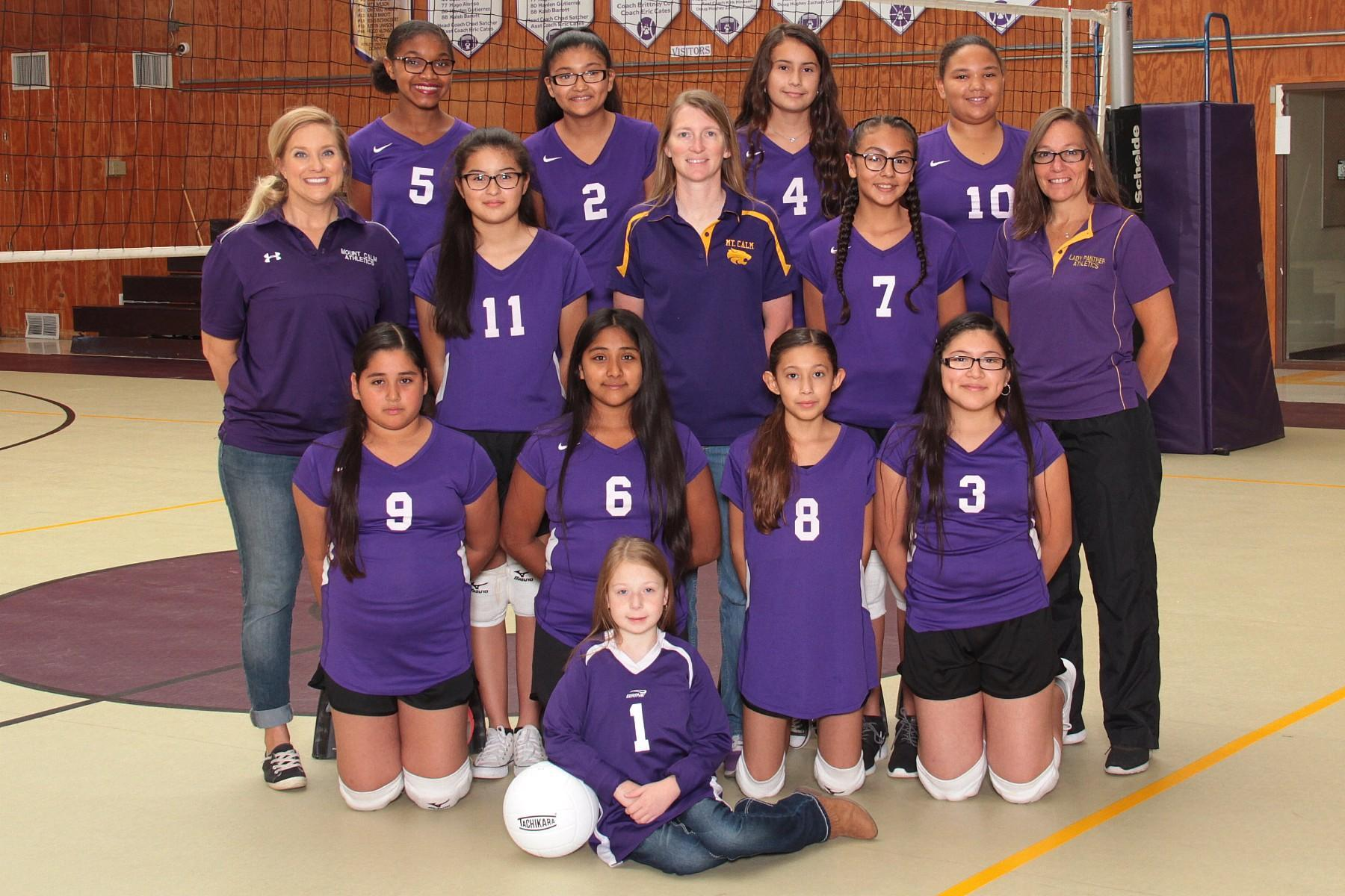 JH volleyball team