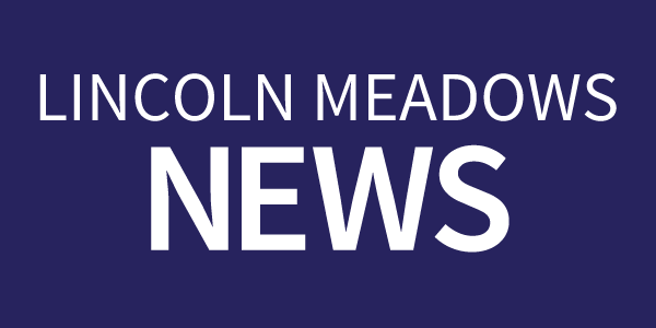 Lincoln Meadows News text on a dark blue rectangle button