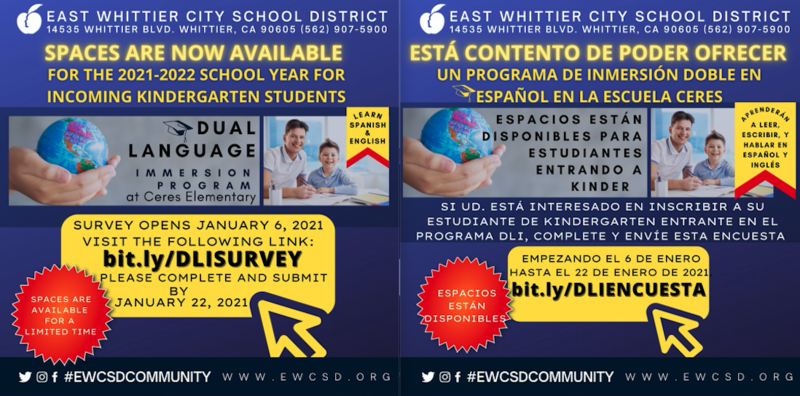 Screenshot of Dual Language Immersion flyer.