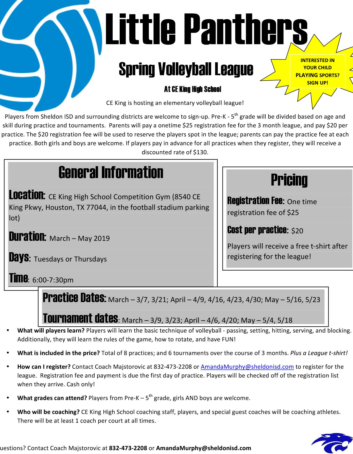 Little Panthers volleyball league flyer - page 1