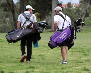 7d_golf_04.jpg