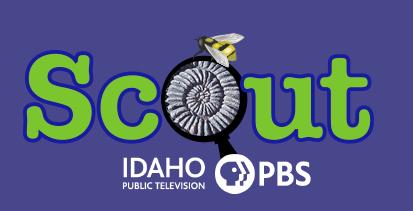 PBS Scout