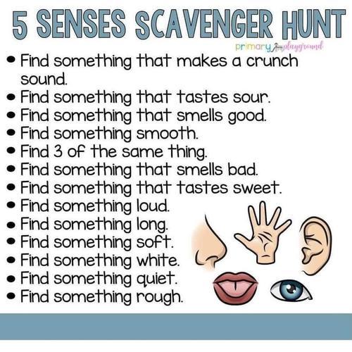 5 Senses Scavenger Hunt