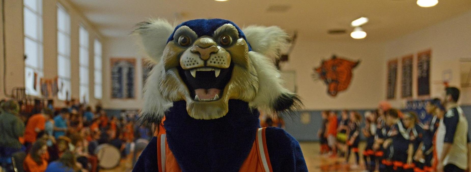 RSD Wildcat Mascot