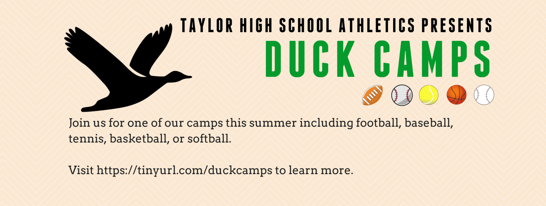 Duck Camps