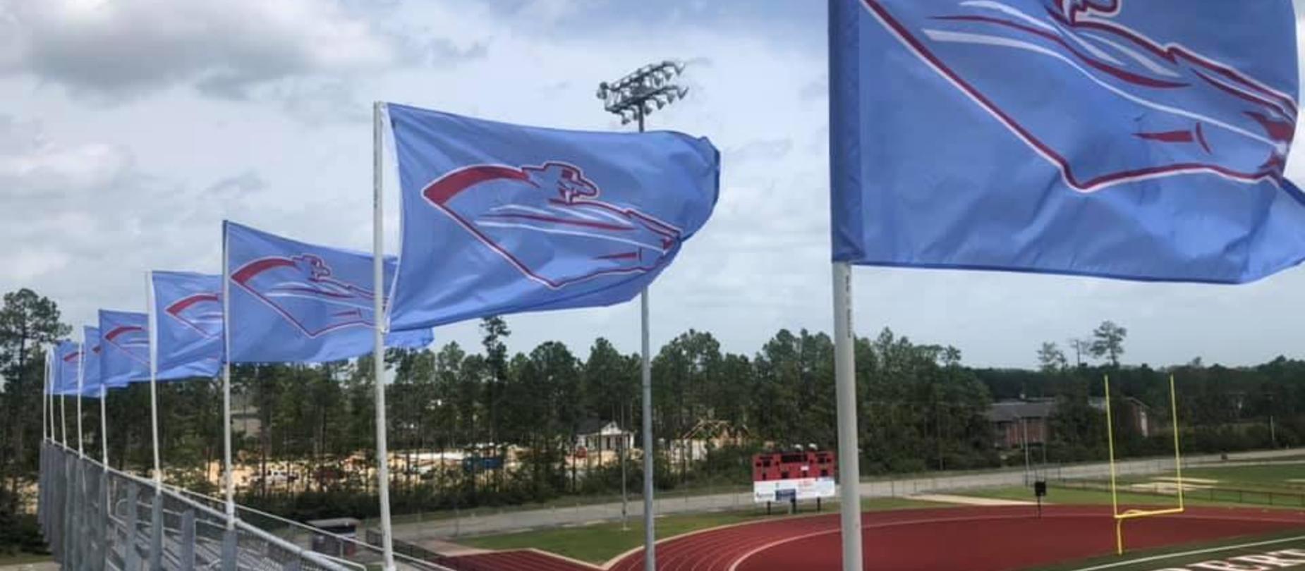 Raider flags