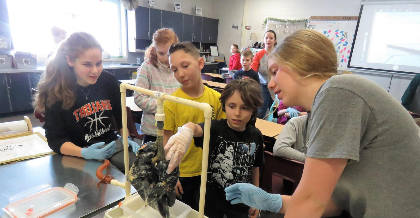 TKHS Teens Against Tobacco Use show younger students a diseased pig lung.