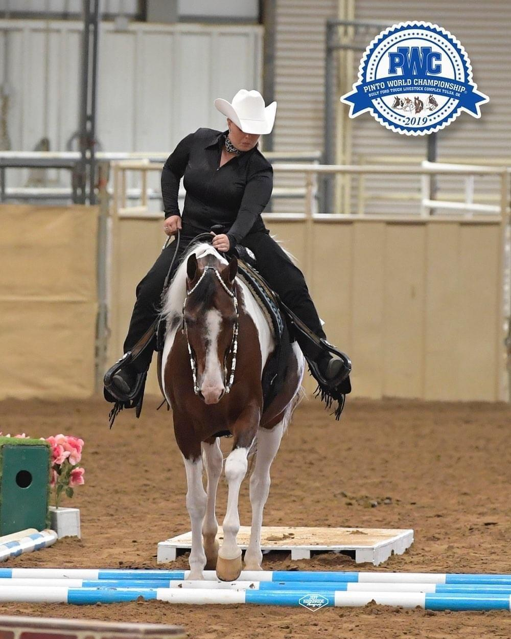 A horse I trained while in grad school, Rudy, and I at the Pinto World Championships in 2019