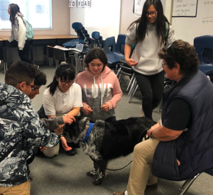 CCA students petting a therapy dog.