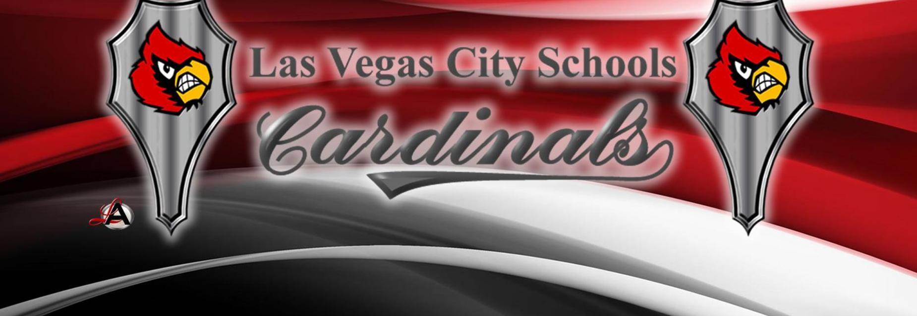 LVCS Banner