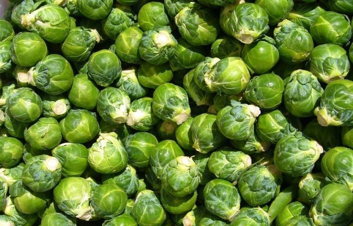 Picture of Brussels Sprouts