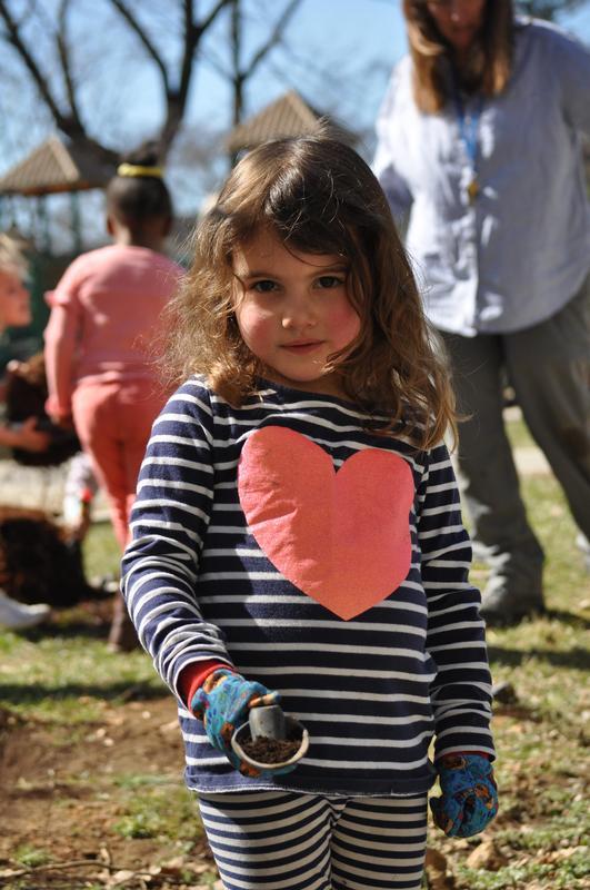 Preschool and prekindergarten planting Featured Photo