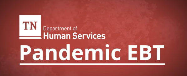 Pandemic Electronic Benefit Transfer (P-EBT) program