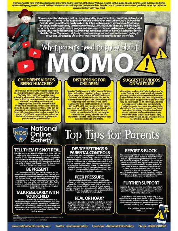 Momo Flyer