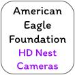 American Eagle Foundation Nest Cameras