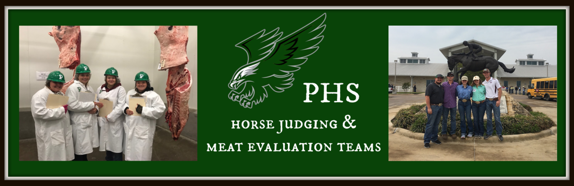 horse judging and meat evaluations teams