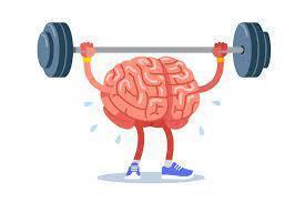 Brain Workouts