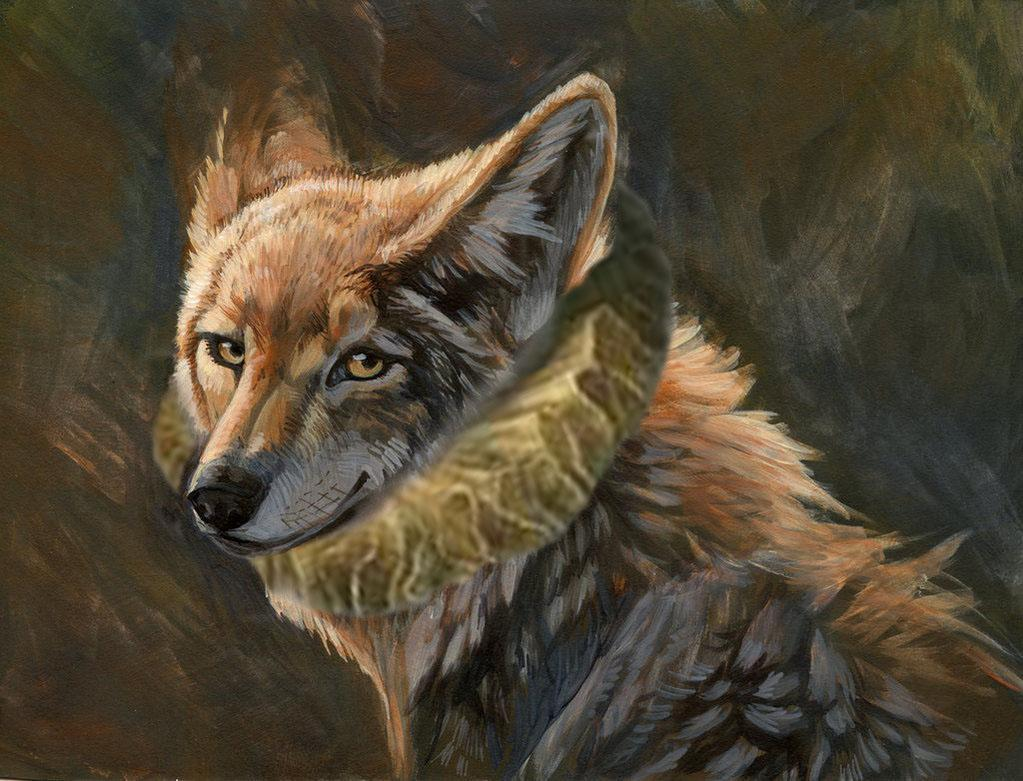 Thespian Coyote