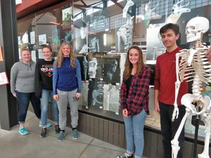 TKHS art students used a skeleton model to create their figure drawings.