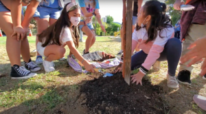 Tree Planting.PNG