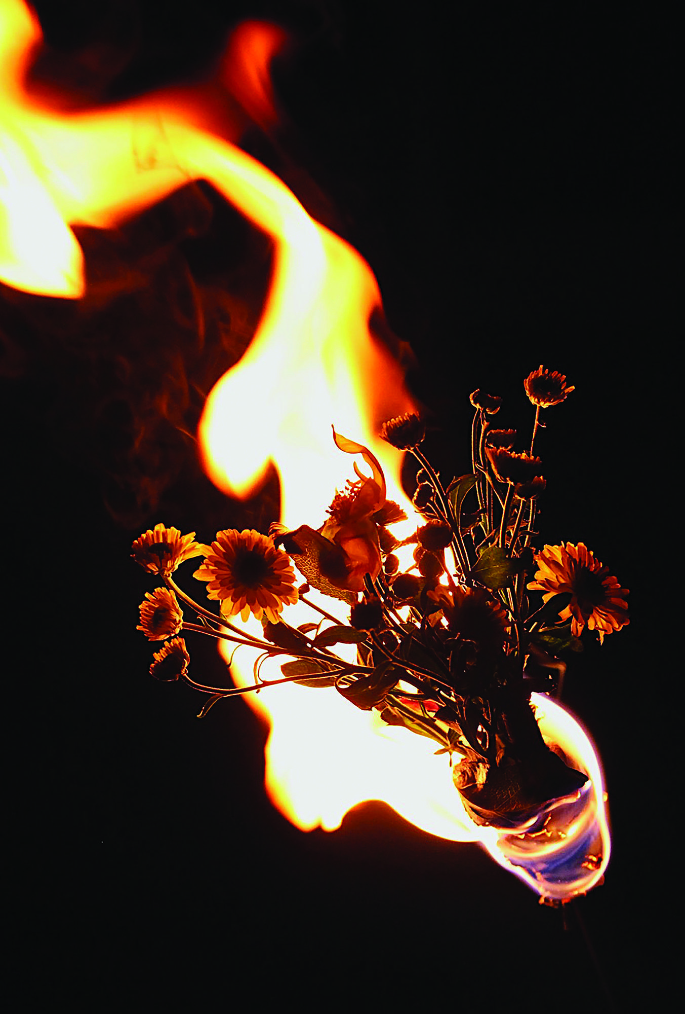 Flaming flowers