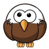 Washington Eagle