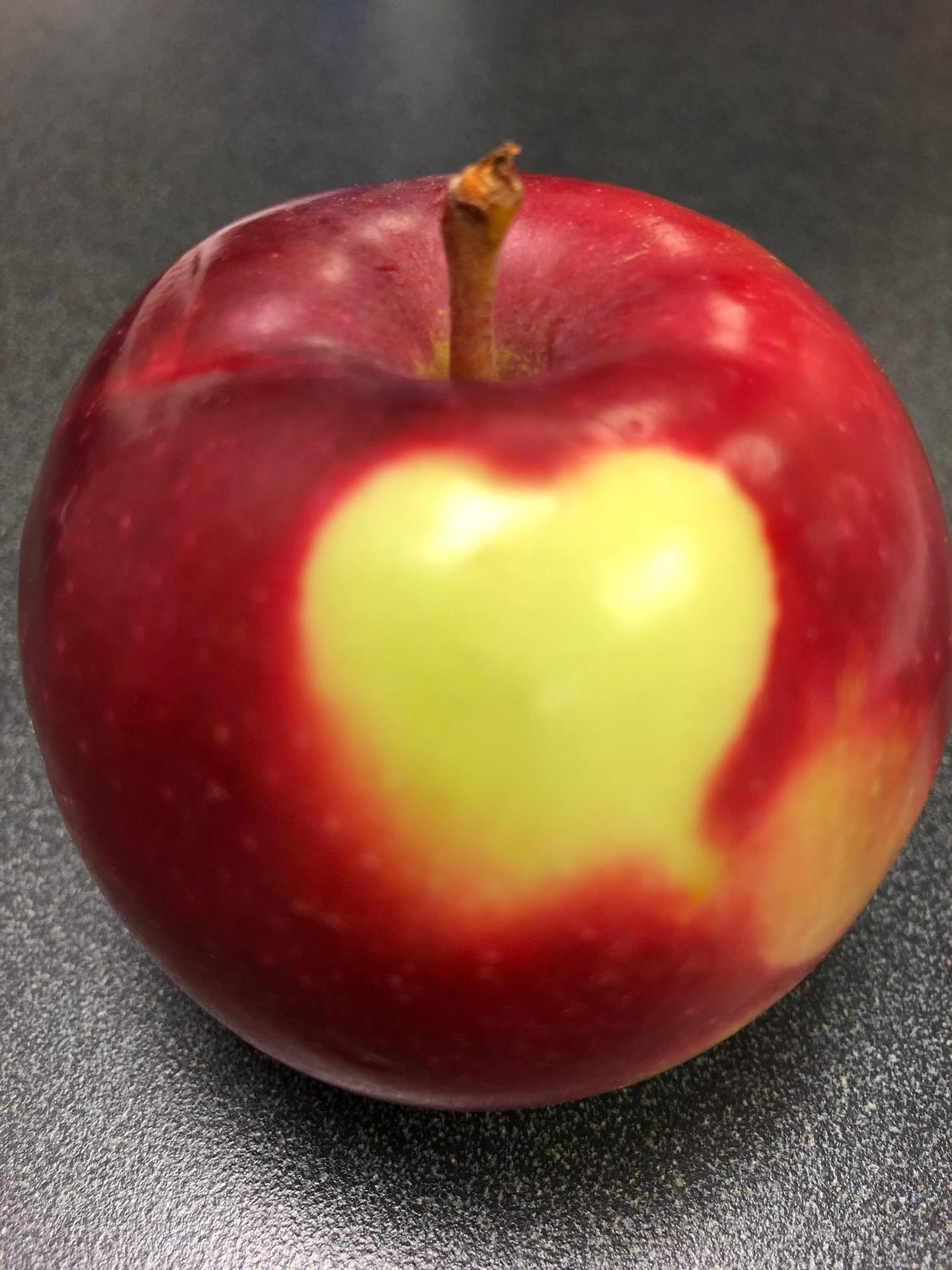 We love apples!