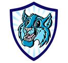 BV Mascot