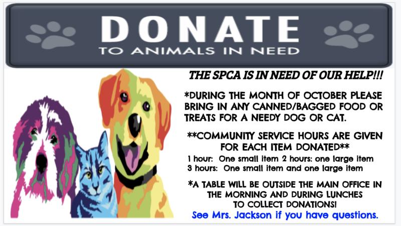 SPCA Flyer