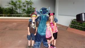 picture with stitch