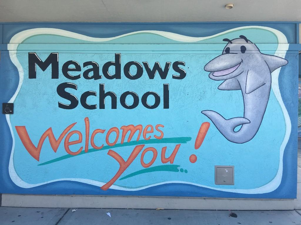 Meadows School sign
