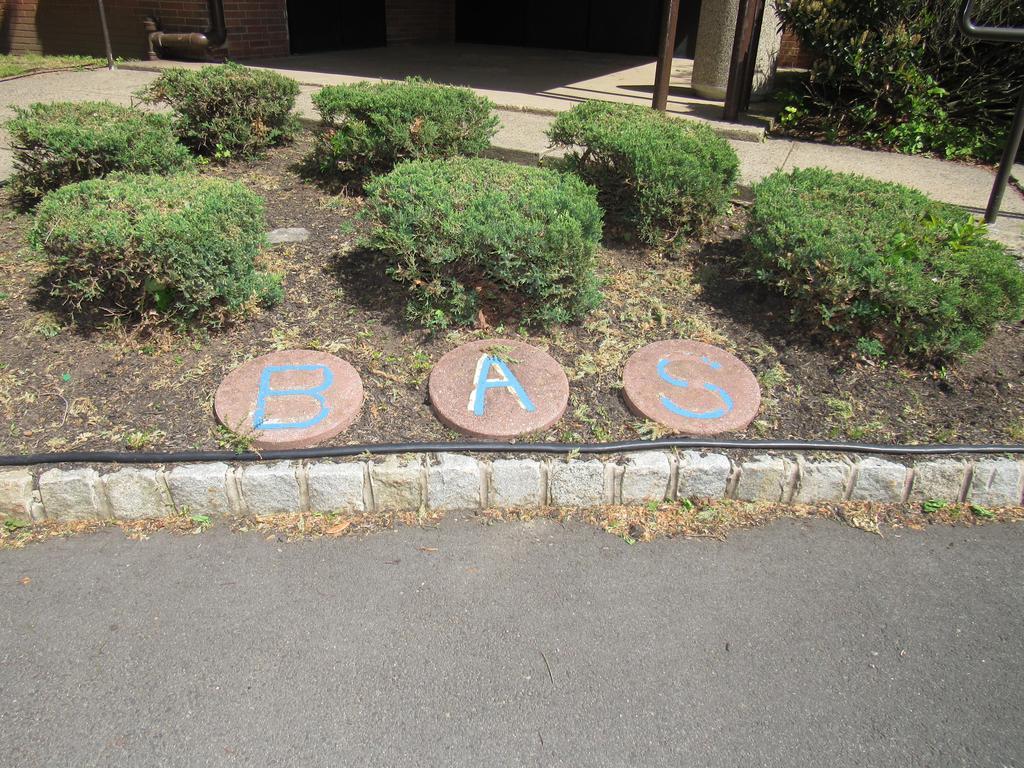 B A S Stones