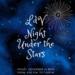 Night Under The Stars