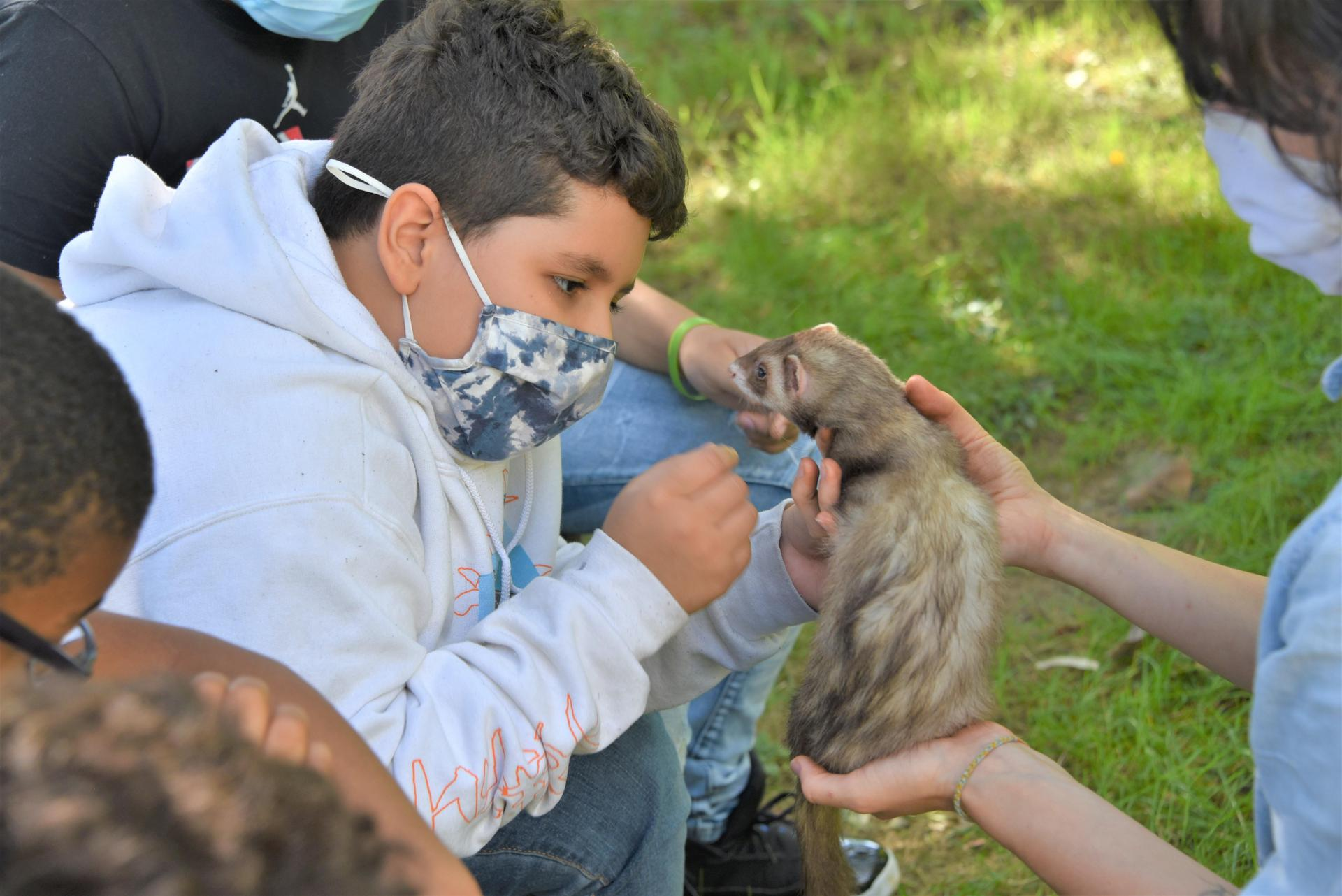A student is petting a ferret