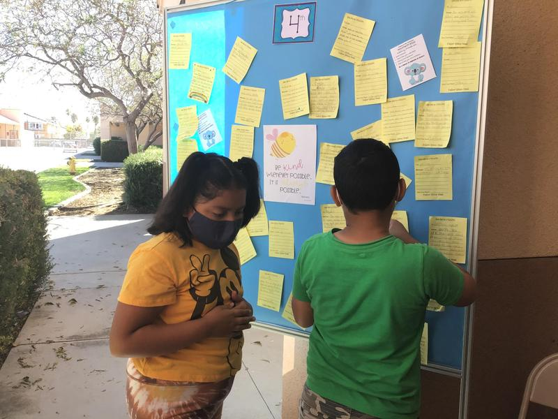 Students pinning their kindness notes up