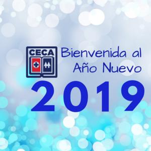 AÑO NUEVO 2019.png