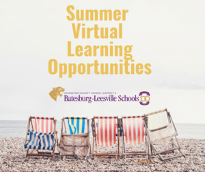 Summer 2020 Virtual Learning Opportunities