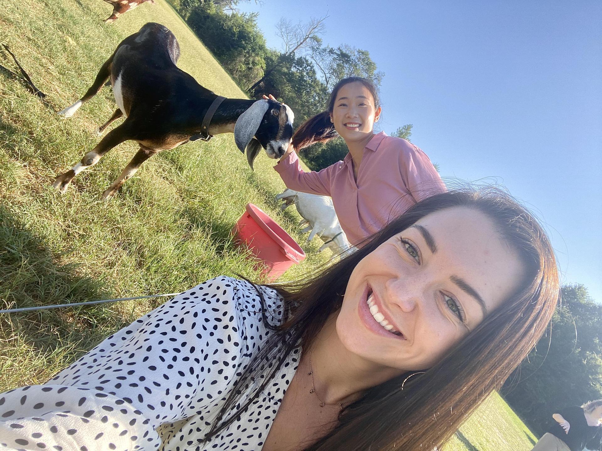 Red Goat Farm