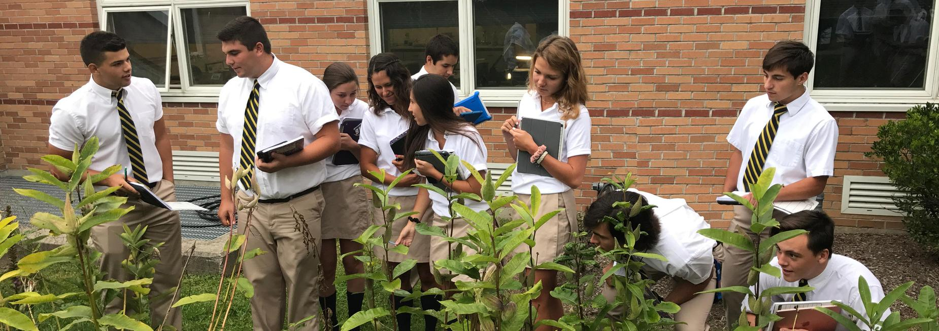 Pope John students studying monarch butterflies